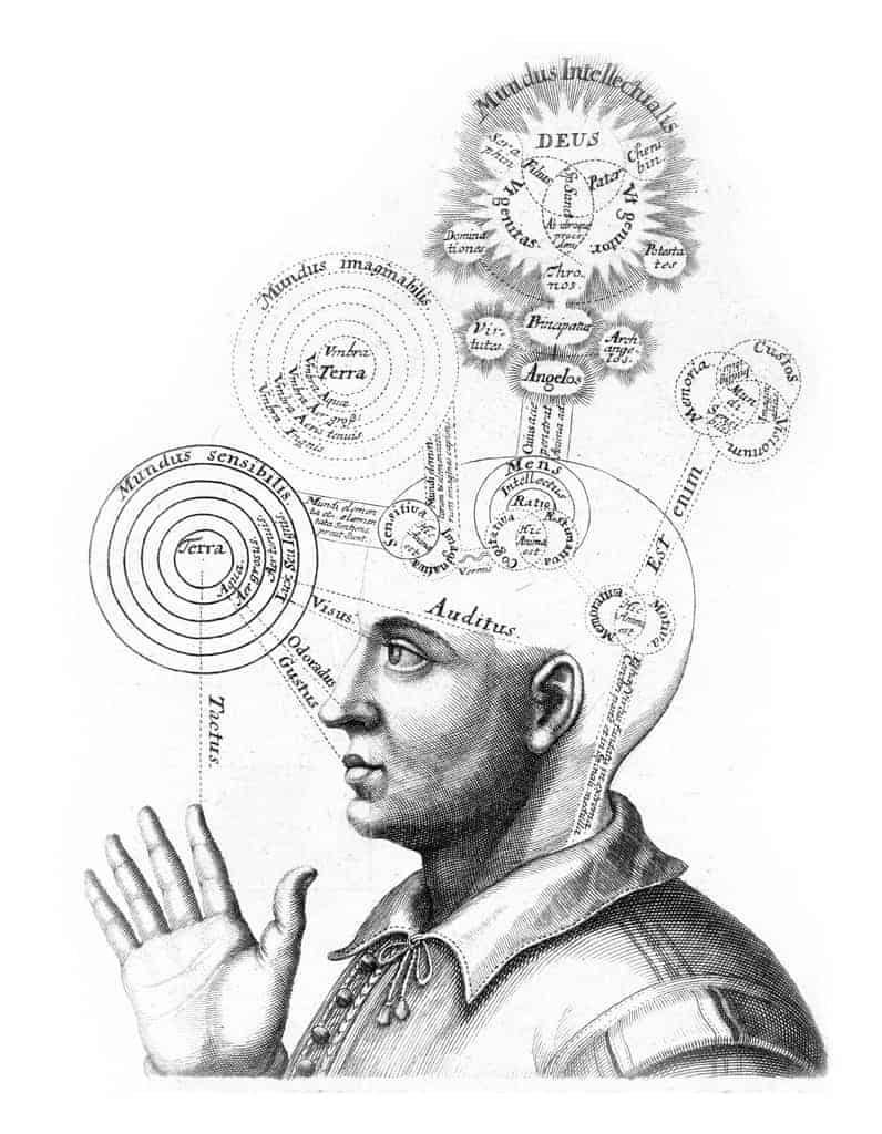 Mente – Corpo – Comportamento: Una Catena Inscindibile.  Mind – Body – Behavior: An Indissoluble Chain.